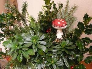christmas blog 001